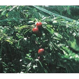 Plant Protection Netting