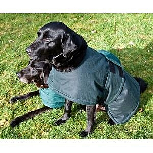 Dog Reversible Towelling Robe