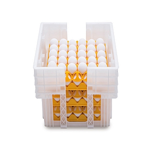 Plastic Egg Tray Crate 180 Size