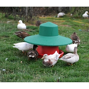 Eco Outdoor Feeder