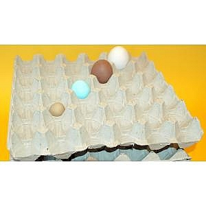 140 Egg Trays