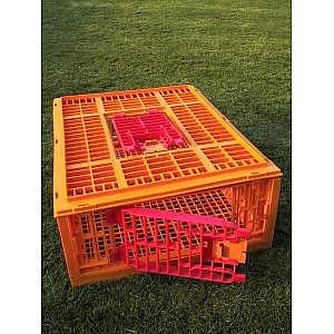 Mondial Transport Crate