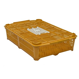 Quail or Chick Crate