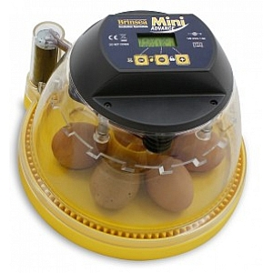 Brinsea Mini Series Incubator